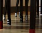 Pressebilder wukies